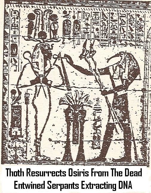 11c - Thoth, DNA, Resurrection of Osiris, Egypt is the 1st civilization teaching life-after-life, it was Marduk who wrote the Egyptian Book of the Dead