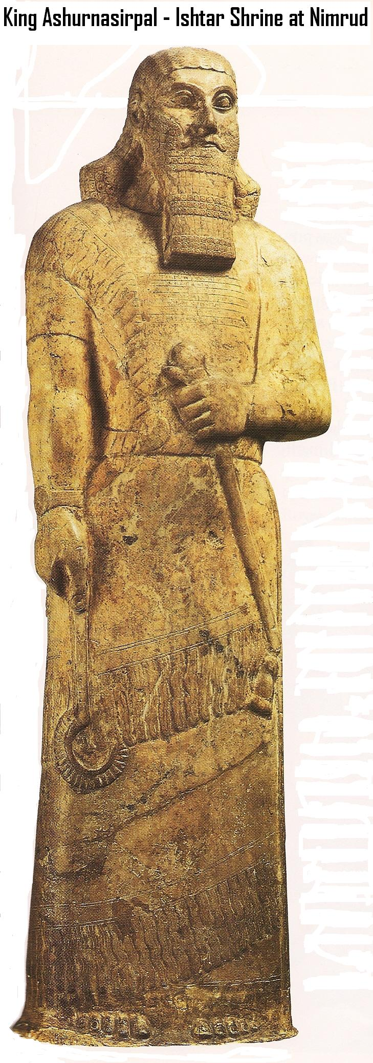 14d - Assyrian artefact of King Ashurnasirpal II of 883 - 859 B.C., as the giant mixed-breed son-kings became popular, they also became the spouse to the Goddess of Love, throughout early history, Inanna espoused dozens & dozens of giant mixed-breed kings, Ex: she & King Shu-Suen produced the god-like child called Shara - Cupid to the Romans, SEE SPOUSE-KINGS ON INANNA'S PAGE