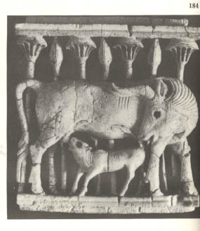 16d -Nimrod ivory plaque of a calf, artefact of when giant aliens from planet Nibiru came & colonized Earth, created man in their image, & in their likeness, to become the workers for the gods colonizing Earth