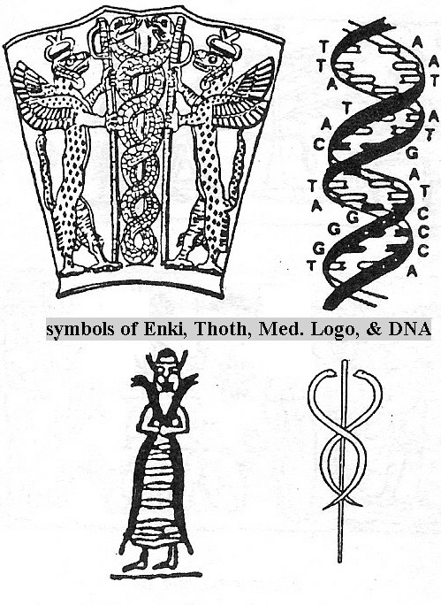 "1b - DNA symbols in past history, it started with Enki, then it was assigned to Ningishzidda as a tribute for his assistance in the fashioning of ""modern man"", Enki, his sister Ninhursag, & his son Ningishzidda mixed the DNA of gods with that of wild man, creating a new mixed-breed species, the evolution of early man's ""missing link"""