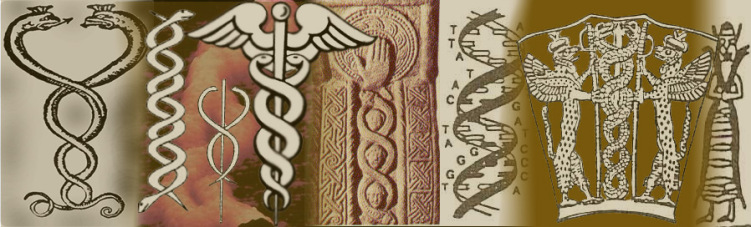1d - DNA symbols of the giant alien gods work with man & animals on Earth, the mixed-species animal experiments of Enki's were condemed to death by Enlil