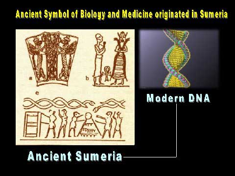 "1e - all symbols of the 1st successful DNA mix of 2 different species from 2 different planets, creating ""modern man"""