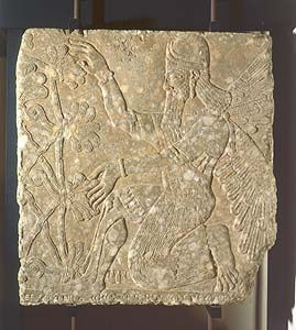 8r - Vatican Museum, Assyrian relief artefact of Enlil's Tree of Life, winged alien Apkulla pilot wall relief artifact, the giants were upon the Earth in those days, & the days after, when the sons of god(s) came down to Earth