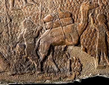 """ancient domestication & work use of animals, the alien gods came down, fashioned """"modern man"""" to be their replacement workers, they also domesticated some animals for heavy work loads, greater than the earthlings capabilities, all fashioned as workers for the giant alien gods on Earth Colony"""