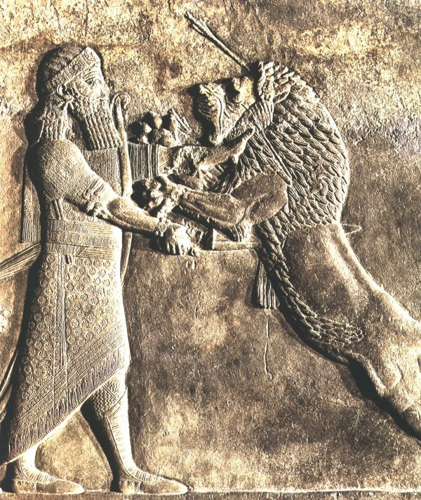 21s - relief of Assyrian King Assurbanipal, giant mixed-breed mighty man manhandling a lion
