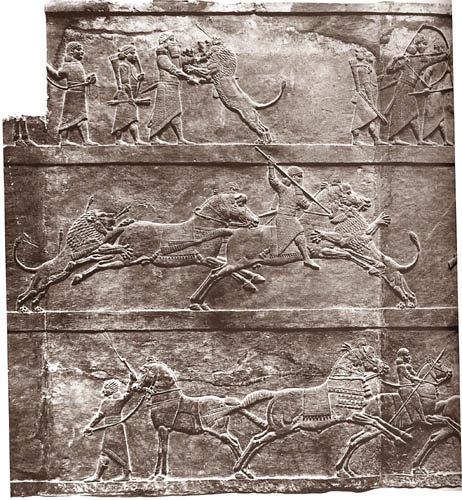 21t - King Ashurbanipal hunting a lion, displaying his size, strength, speed, & physical skills way beyond the earthlings